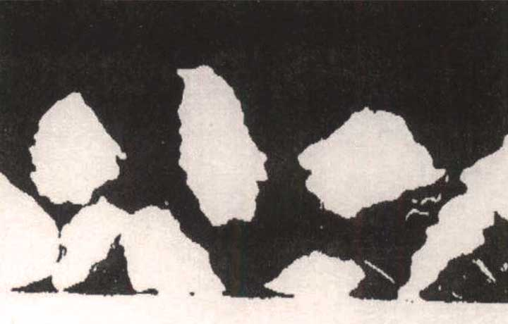 Magnified image of irregular particles in rough coating