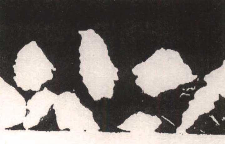 Ampliación de particulas irregulares en recubrimiento rugoso